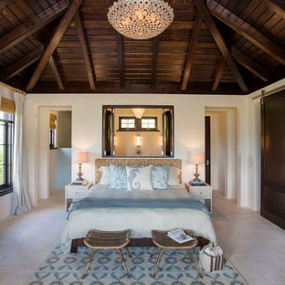Inspiration for a tropical master travertine floor bedroom remodel in Charleston with white walls
