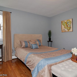 Bedroom - transitional guest light wood floor bedroom idea in Providence with blue walls