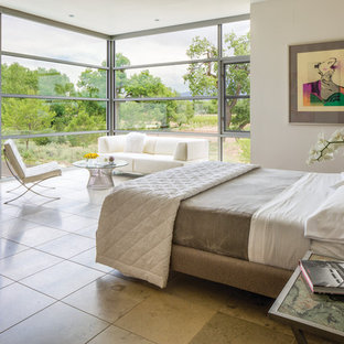 Inspiration for a large contemporary travertine floor bedroom remodel in Albuquerque with beige walls