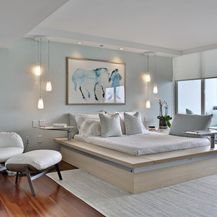 Inspiration for a mid-sized contemporary master medium tone wood floor and orange floor bedroom remodel in Miami with blue walls