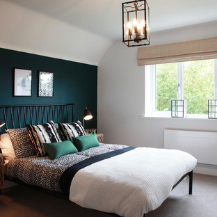 Inspiration for a classic bedroom in Other with blue walls, carpet and beige floors.