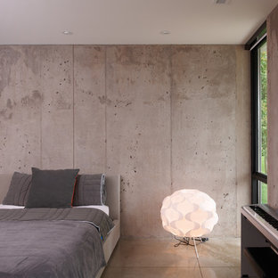 Minimalist concrete floor bedroom photo in Minneapolis