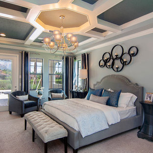 Bedroom - transitional master carpeted and gray floor bedroom idea in Orlando with gray walls and no fireplace
