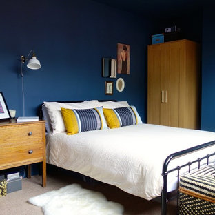 Design ideas for a medium sized classic master bedroom in Other with blue walls, carpet and no fireplace.