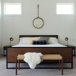Diseño de dormitorio principal, actual, con paredes blancas y moqueta