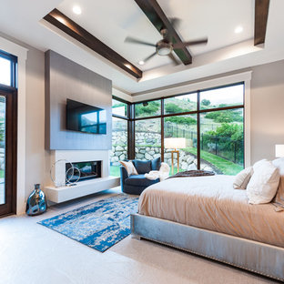 Example of a mid-sized transitional master carpeted bedroom design in Salt Lake City with blue walls, a standard fireplace and a concrete fireplace