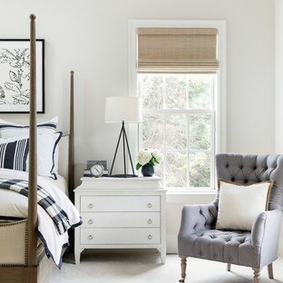 Example of a beach style bedroom design in Minneapolis