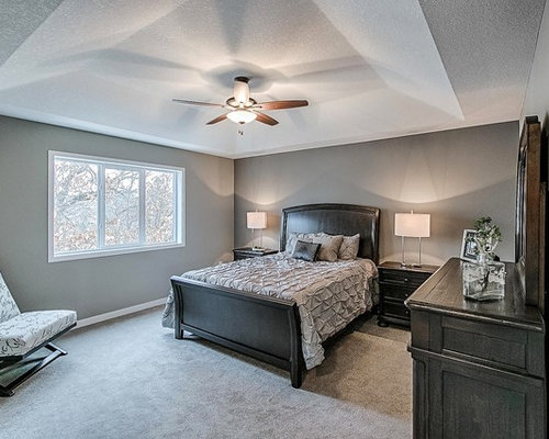 example of a transitional bedroom design in minneapolis