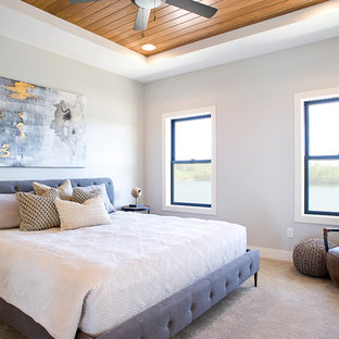 Example of a mid-sized transitional master carpeted and beige floor bedroom design in Other with gray walls