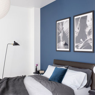 75 Beautiful Contemporary Blue Bedroom Pictures Ideas March 2021 Houzz
