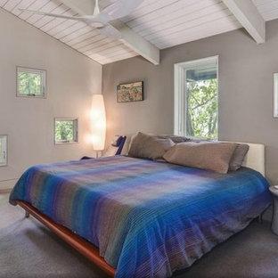 Foto de dormitorio principal, ecléctico, grande, con paredes grises, moqueta, chimenea de doble cara y marco de chimenea de metal