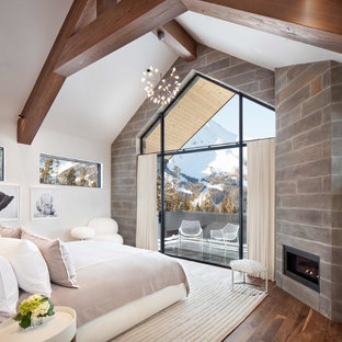 Photo of a contemporary bedroom in Other with white walls, medium hardwood flooring, a ribbon fireplace, a metal fireplace surround and brown floors.