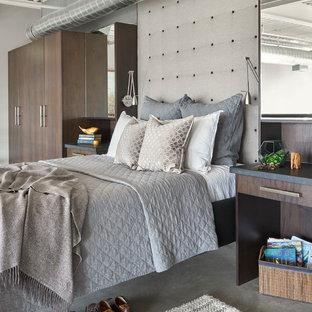 Diseño de dormitorio tipo loft, minimalista, de tamaño medio, con paredes grises, suelo de cemento y suelo gris
