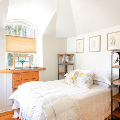 Bedroom - traditional medium tone wood floor bedroom idea in Other with white walls