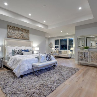 Inspiration for a large transitional master light wood floor and white floor bedroom remodel in San Francisco with gray walls