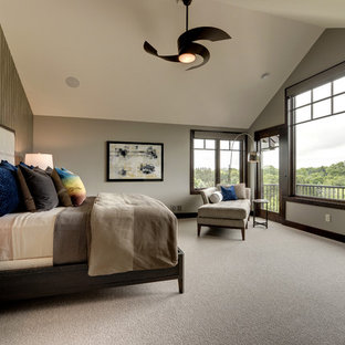 Taupe Carpet Houzz