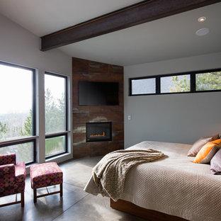 他の地域の広いコンテンポラリースタイルのおしゃれな主寝室 (グレーの壁、コンクリートの床、金属の暖炉まわり、コーナー設置型暖炉)