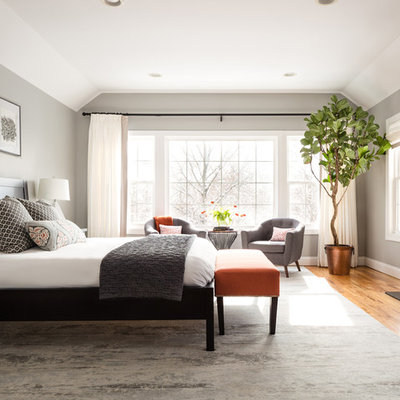Bedroom - large transitional master medium tone wood floor and brown floor bedroom idea in New York with gray walls, a standard fireplace and a stone fireplace