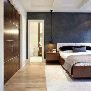 Foto de dormitorio principal, minimalista, grande, con paredes marrones y suelo de madera clara