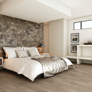 ボイシの広いモダンスタイルのおしゃれな客用寝室 (グレーの壁、磁器タイルの床)