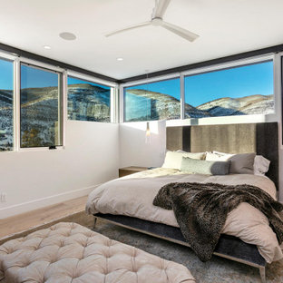 Mountain style bedroom photo in Denver
