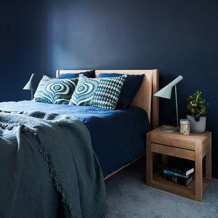 シドニーの中サイズのコンテンポラリースタイルのおしゃれなゲスト用寝室 (青い壁、カーペット敷き、暖炉なし、青い床) のインテリア