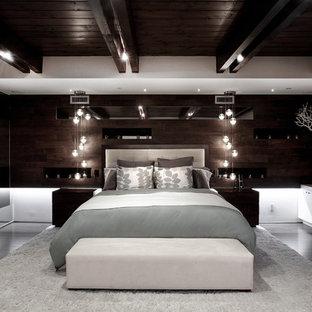 Esempio di una camera da letto contemporanea con parquet scuro