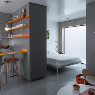 Immagine di una piccola camera matrimoniale minimal con pareti grigie, pavimento in cemento, pavimento grigio e nessun camino