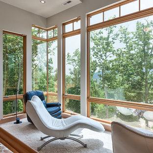 他の地域の中サイズのコンテンポラリースタイルのおしゃれなゲスト用寝室 (グレーの壁、カーペット敷き) のインテリア