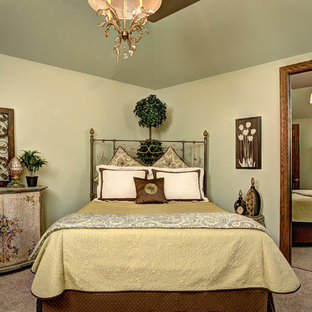 Example of a mid-sized classic guest carpeted bedroom design in Chicago with green walls and no fireplace