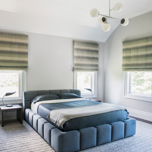 Example of a transitional bedroom design in New York with gray walls and no fireplace