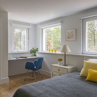 Inspiration for a mid-sized modern master light wood floor bedroom remodel in Boston with white walls