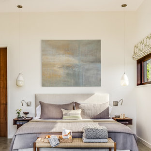 Example Of An Asian Master Concrete Floor And Gray Floor Bedroom Design In  San Francisco With