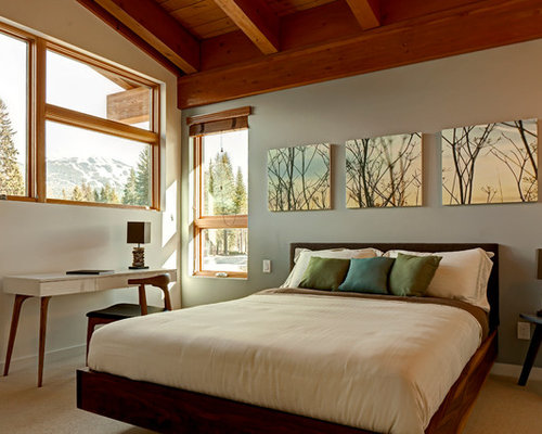 trendy bedroom photo in vancouver with carpet and gray walls - Bedroom Art Ideas