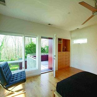 Foto de habitación de invitados minimalista, de tamaño medio, con chimenea tradicional y marco de chimenea de metal