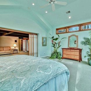 ワシントンD.C.の巨大なエクレクティックスタイルのおしゃれなゲスト用寝室 (青い壁、カーペット敷き、コーナー設置型暖炉、石材の暖炉まわり、ベージュの床)