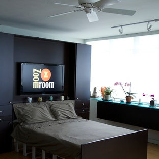 Remote Controlled Murphy Bed Houzz