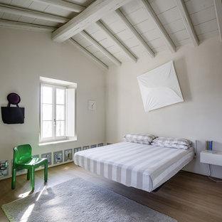 Esempio di una camera matrimoniale design di medie dimensioni con parquet chiaro, nessun camino e pareti bianche
