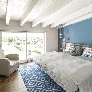 Esempio di una camera matrimoniale stile marinaro di medie dimensioni con pareti blu, parquet scuro e pavimento multicolore