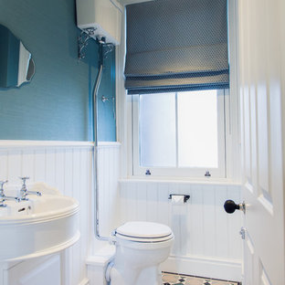 This is an example of a small traditional cloakroom in Other with white cabinets, blue walls, ceramic flooring, multi-coloured floors, raised-panel cabinets, a one-piece toilet and a console sink.