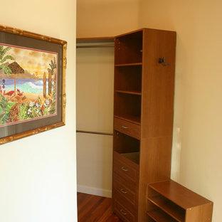 Modelo de armario unisex, de estilo americano, de tamaño medio, con armarios con paneles lisos, puertas de armario de madera oscura y suelo de madera en tonos medios