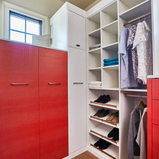 3 Luxurious Master Closets