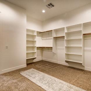 Esempio di un'ampia cabina armadio unisex con moquette, pavimento beige e soffitto a volta