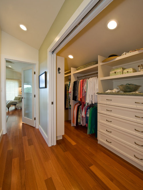 Houzz narrow walk in closet design ideas remodel pictures - Pictures of walk in closets ...