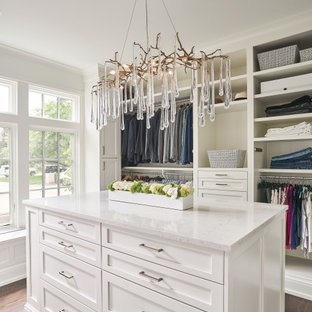 Design ideas for a mid-sized transitional women's walk-in wardrobe in Detroit with shaker cabinets, white cabinets, medium hardwood floors and brown floor.