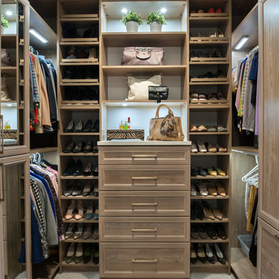 Inspiration for a mid-sized transitional gender-neutral carpeted and beige floor walk-in closet remodel in Detroit with recessed-panel cabinets and blue cabinets