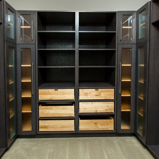Inspiration for a mid-sized modern carpeted walk-in closet remodel in Toronto with dark wood cabinets