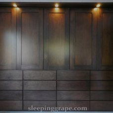 Contemporary Closet by Rollin Fox, Sleeping Grape Wine Cellars