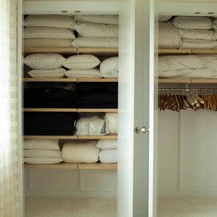 Foto de armario unisex, actual, grande, con armarios con paneles lisos y puertas de armario de madera oscura