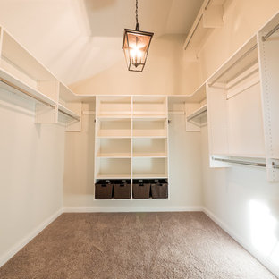 Large arts and crafts gender-neutral carpeted walk-in closet photo in Other with open cabinets and white cabinets